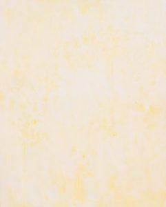 モッコウバラ -banksia rose-