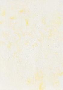 モッコウバラ a -banksia rose A-