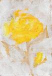 Yellow Rose d -Yellow Rose d-